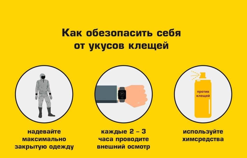 Правило 40 секунд. как защитить себя от вирусов - советы инфекциониста