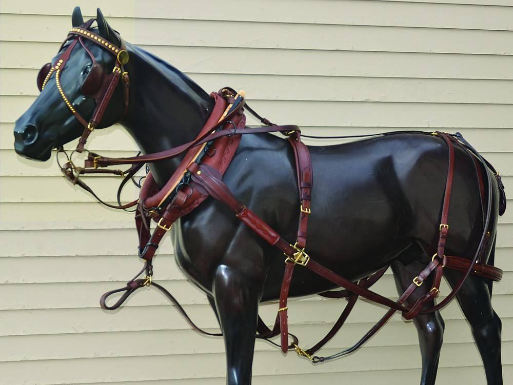 Упряжь лошадью красна: все о конской сбруе