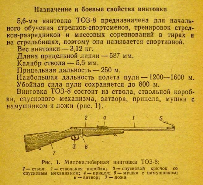 Убойная «мелкашка» — популярные модели и калибр для охоты