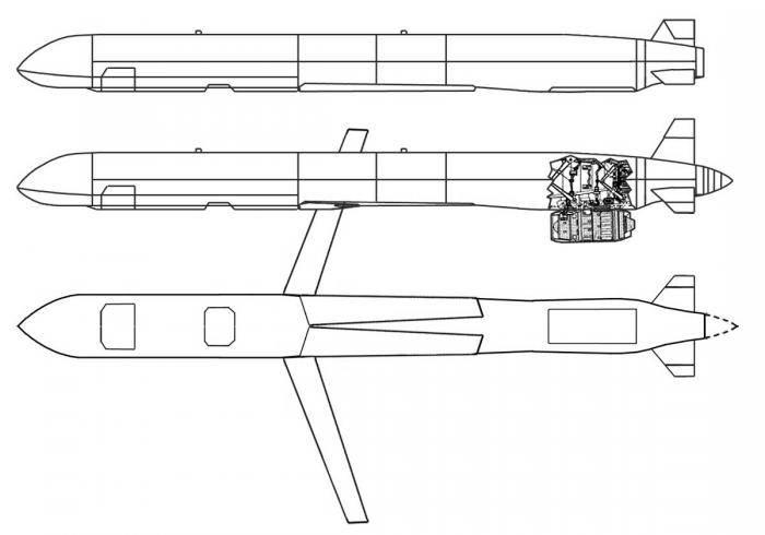 Х-101