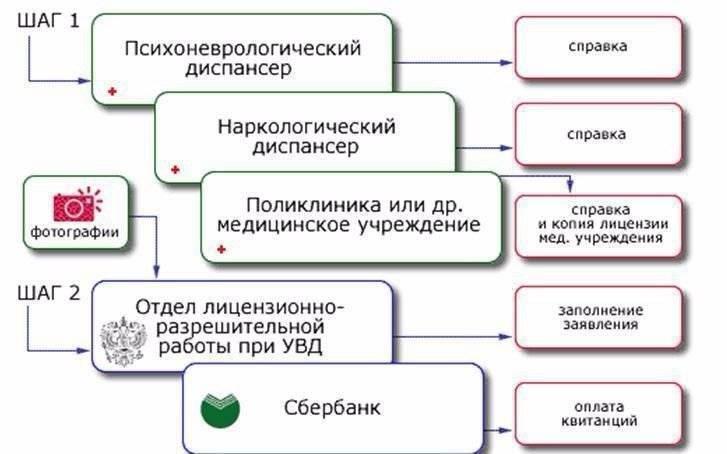 Как получить разрешение на травматическое оружие в москве в 2020