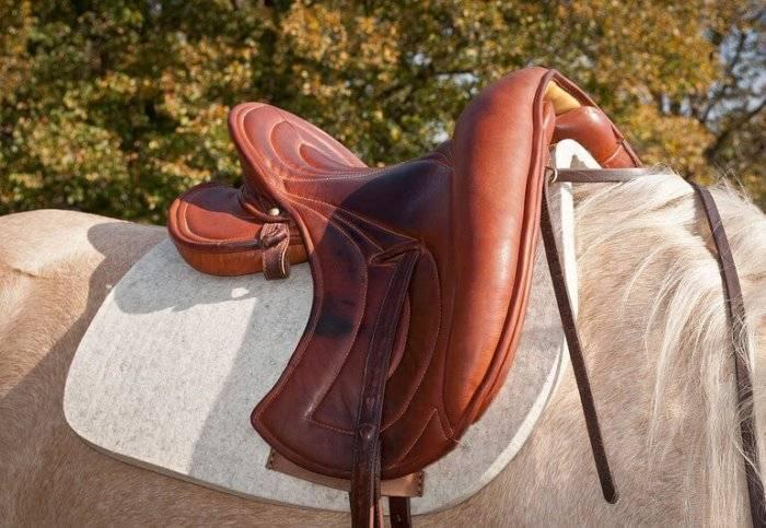 Седло для лошади: самые популярные версии и современные модификации
