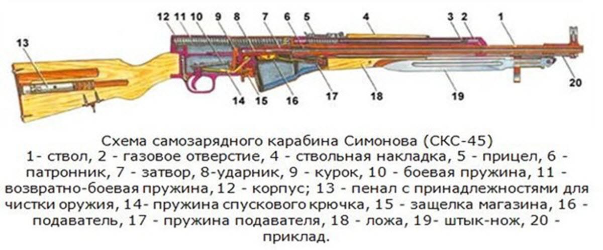 Самозарядный карабин симонова (скс)
