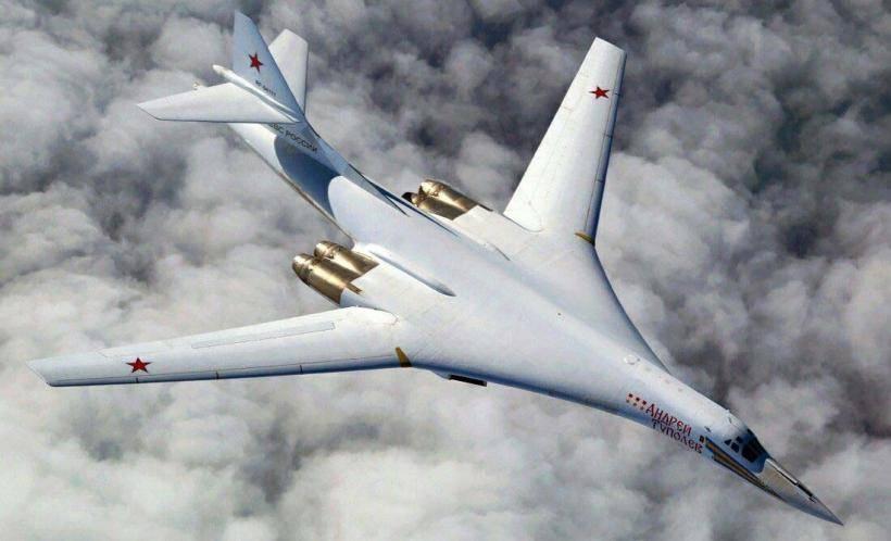"""Самолет """"белый лебедь"""": технические характеристики и фото"""