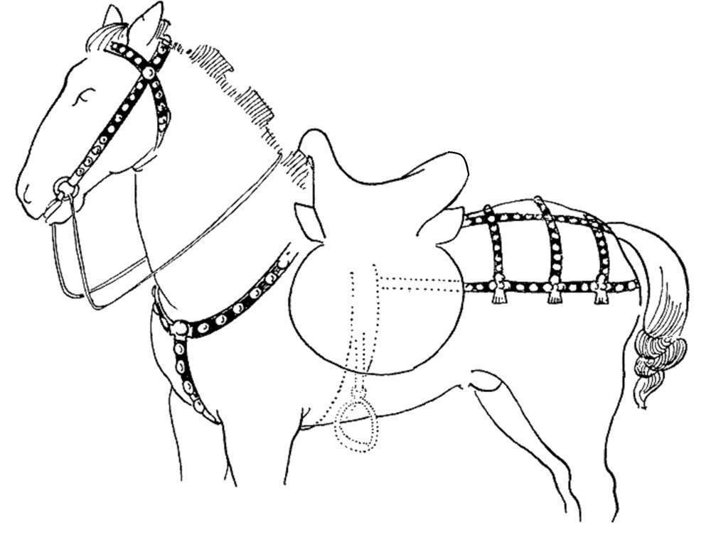Как запрячь лошадь правильно: правила, этапы и полезные советы