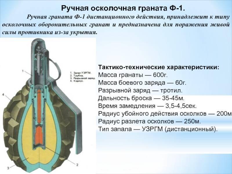Шпаргалки к экзамену по дисциплине огневая подготовка - история создания и развития ручных осколочных гранат