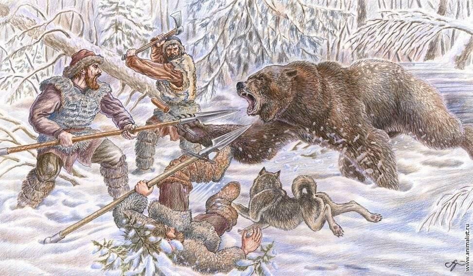 картинки охота на медведя двух