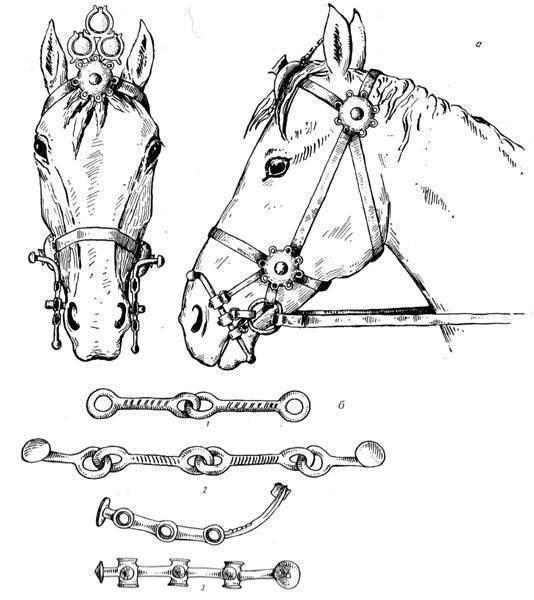 Упряжь для лошади и других животных: как подобрать правильную