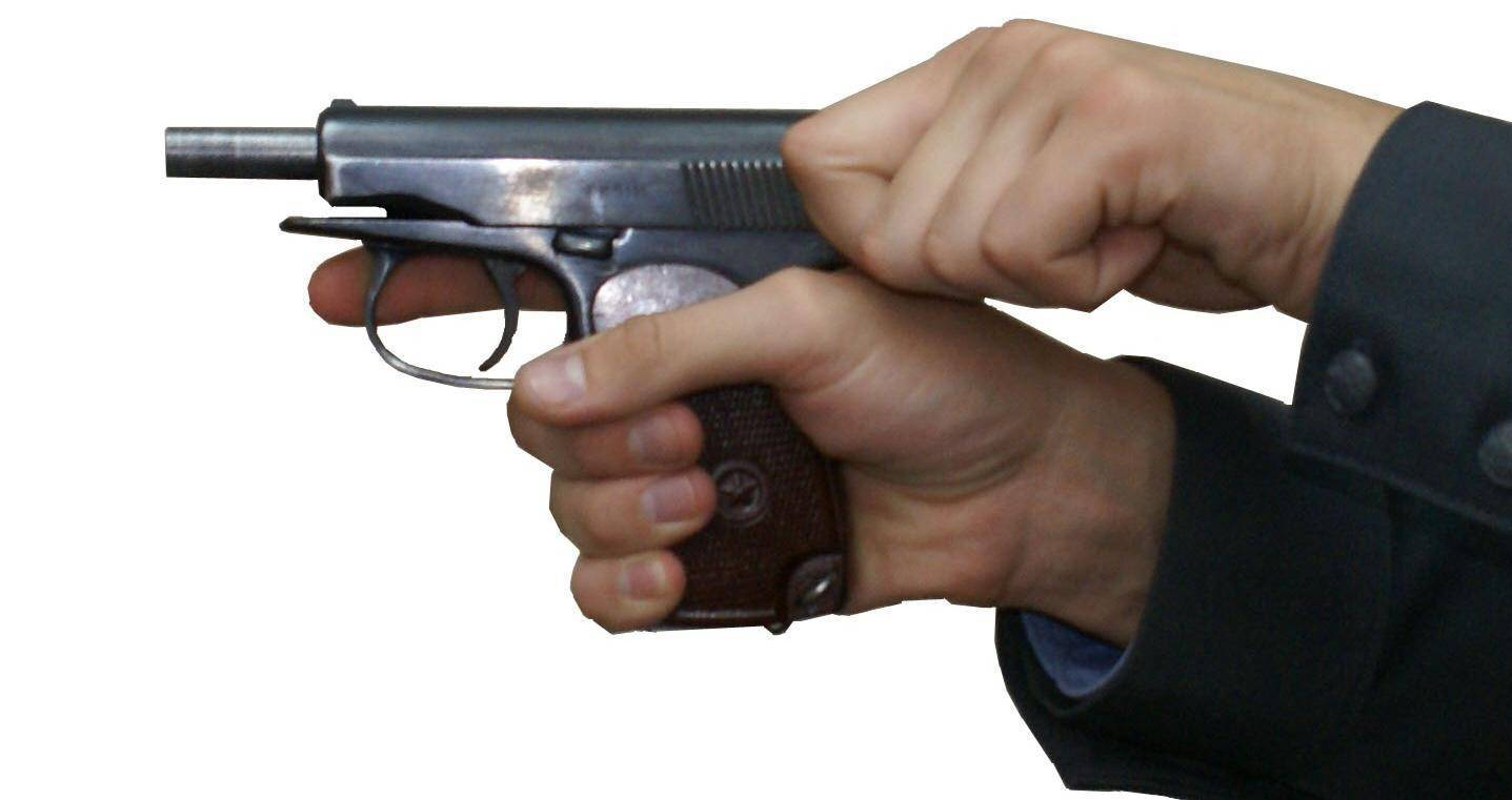 Спортивная педагогика в пулевой стрельбе. пулевая стрельба и ее особенности