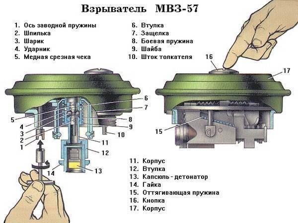 Виды авиации в россии