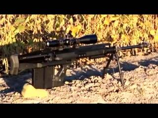 Century international arms vz2008 карабин — характеристики, фото, ттх