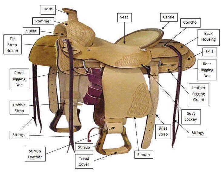 Как выбрать седло для лошади?