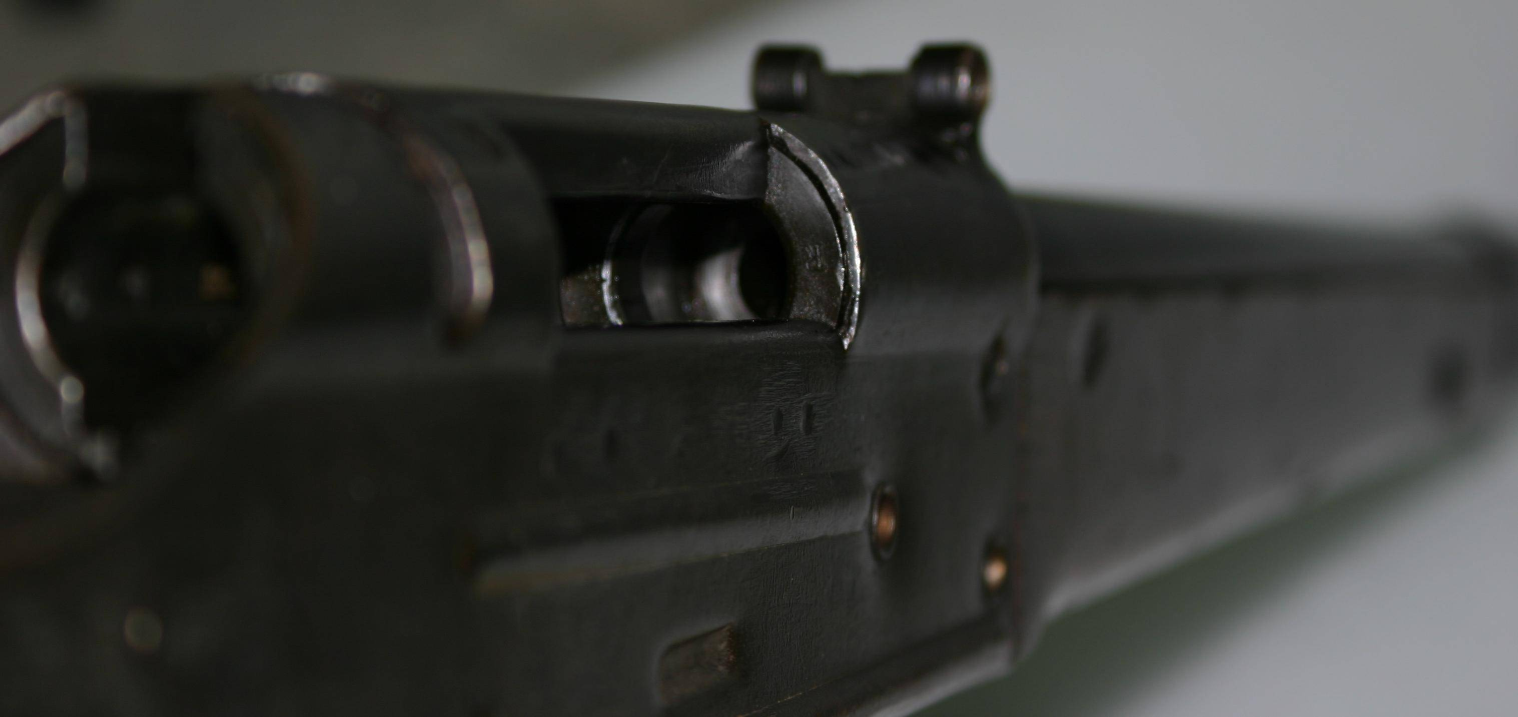 Volkssturmgewehr - volkssturmgewehr