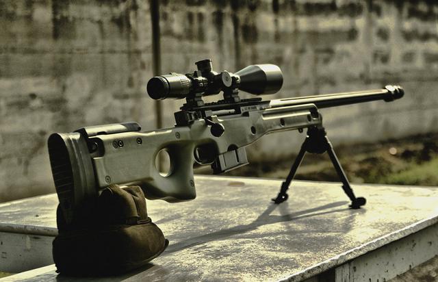 Крупнокалиберная снайперская винтовка arctic warfare .50
