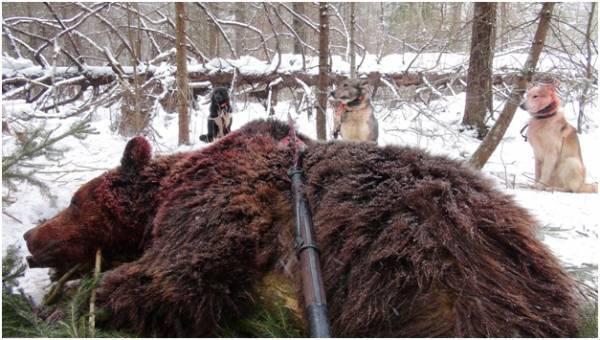 Русская рогатина и охота с нею