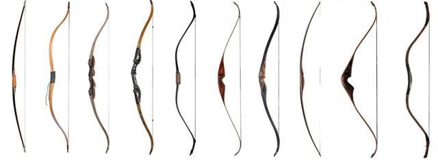 Лучшие в мире традиционные луки - как выбирать и как хранить традиционные луки