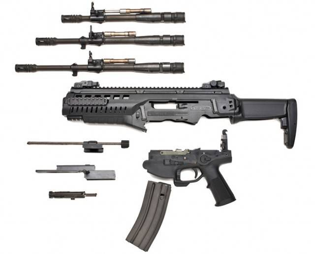 Самозарядная винтовка Beretta ARX-200