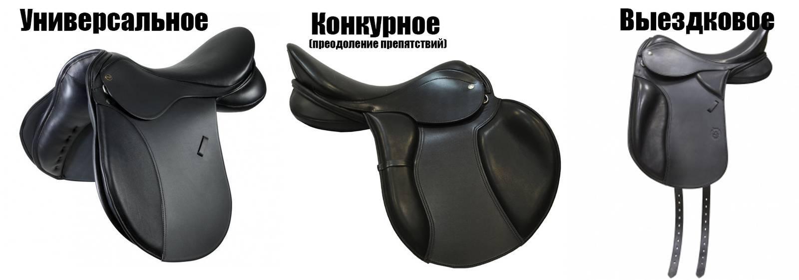 Амуниция для лошадей и всадников: обзор снаряжения