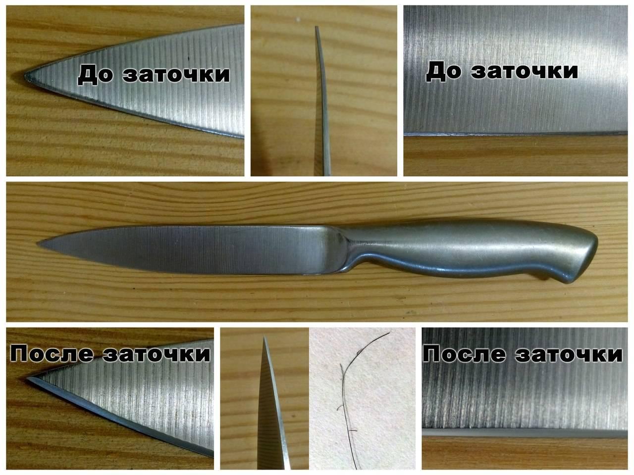 Как выбрать охотничий нож: на что обращать внимание в первую очередь
