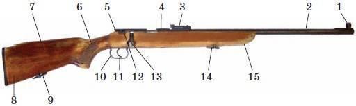 Мелкокалиберное оружие для охоты: за и против