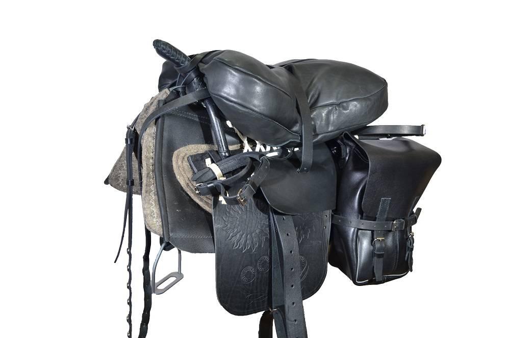 Разновидность и предназначение седел для лошади