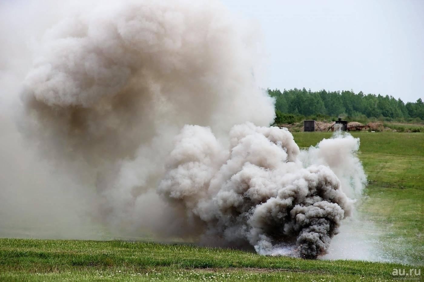 Особенности использования дымовых шашек для дезинфекции теплиц