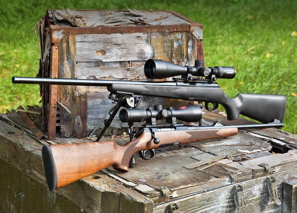Охота с мелкашкой— какую выбрать и на кого охотиться?