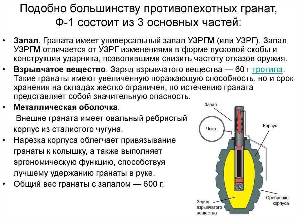 """Ручная граната """"лимонка"""": технические характеристики и принцип действия"""