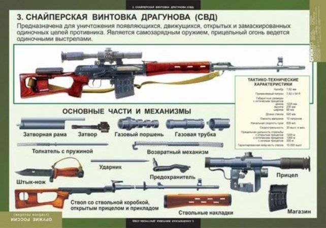Незаменимая «плётка» — снайперская винтовка драгунова