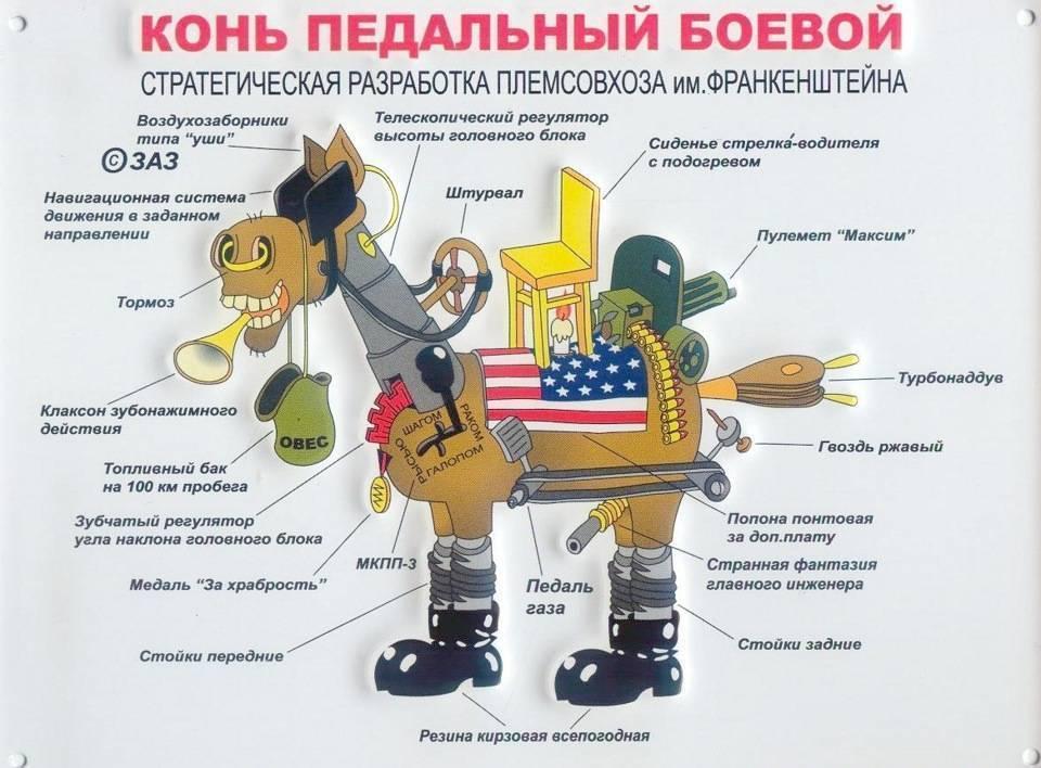 Военные берцы: история появления и разнообразие современных моделей