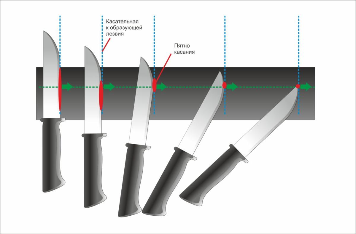Шкуросъемные ножи: виды, особенности выбора и использования