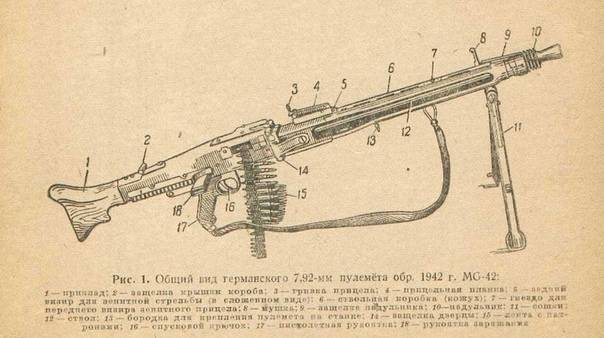 Слон против кита. сравниваем пулемет дегтярева инемецкий mg-34