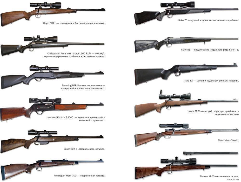Как получить разрешение на нарезное оружие в украине